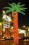 Светодиодная пальма 500x750 см