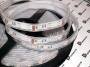Светодиодная лента Эконом 5050 - 60SMD/метр