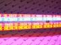 """Светильник светодиодный для выращивания растений """"РОСТОК-10М"""""""